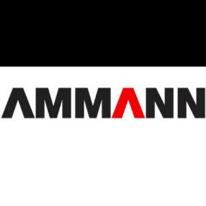 Ammann-300